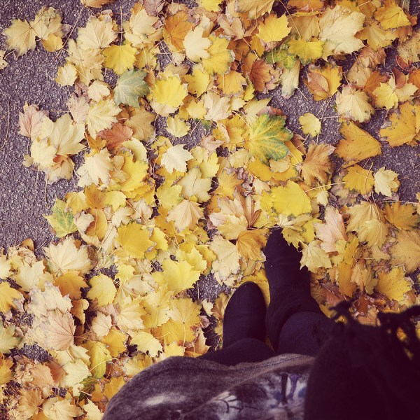 Don't You Just Love New York in the Fall?
