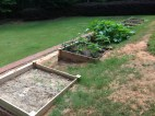Other side view of the garden boxes.