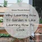 Green Thumb School (How gardening and cooking are alike)