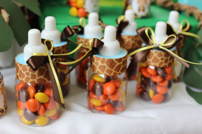 Jungle Themed Baby Shower Favors
