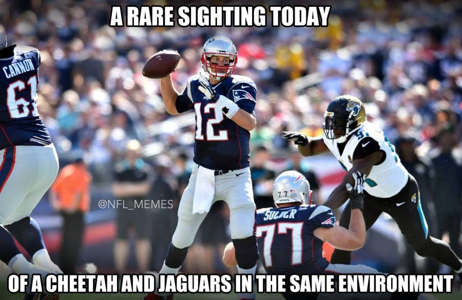 Pats and Jags