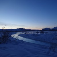 How to be Wildly Happy on a January Day in the Arctic