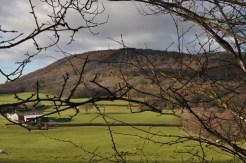 The Wrekin in the distance