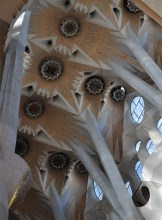 Ceiling in Sagrada Familia - Chasing Starry Skies