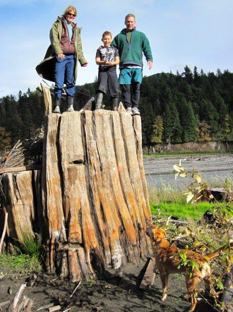 lee, tim hunter on stump