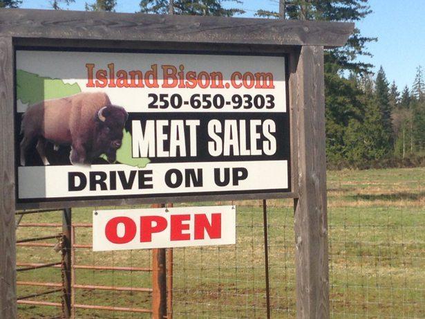 bison sign