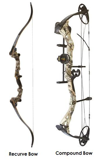 Bows: Compound vs. Traditional