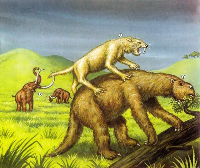 Dinosaurier - Smilodon