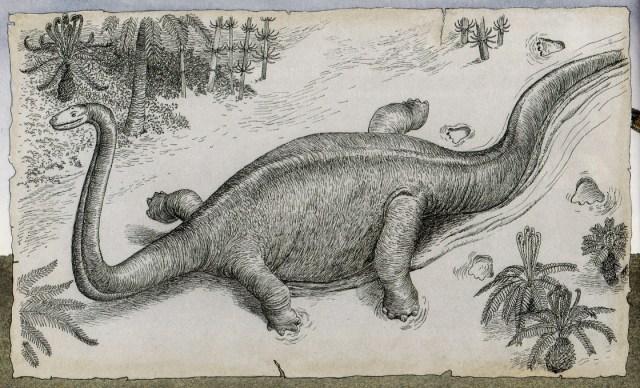 Sprawling sauropod