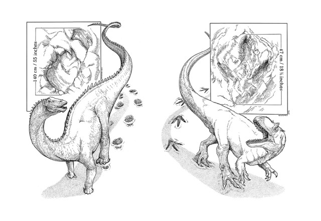 Black and white line drawings of a sauropod and theropod, the Copper Ridge trackmakers, by Matt Celeskey. Shared here with the artist's permission.