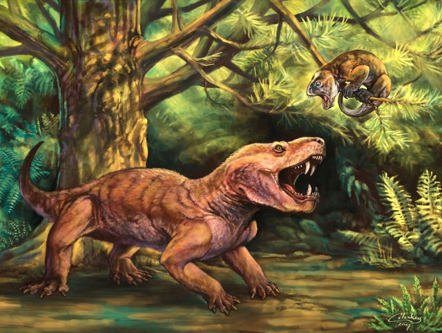 Illustration of the therapsid Gorynynchus, illustrated by Matt Celeskey. Shared here with the artist's permission.