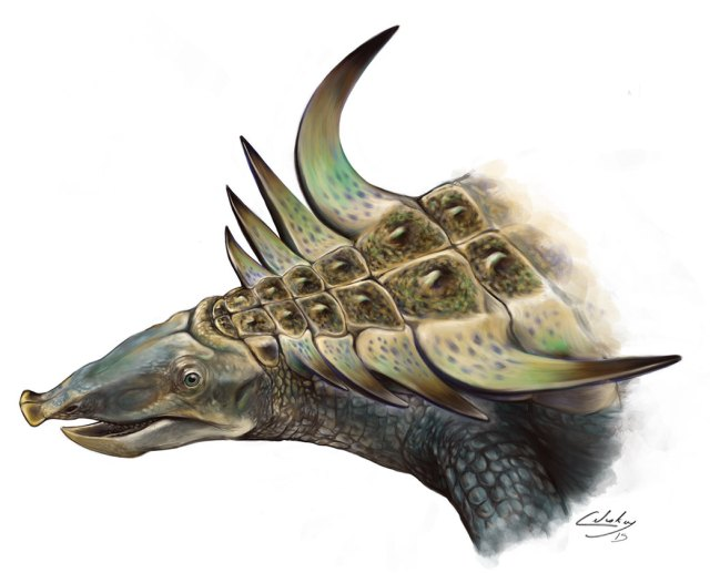 Portrait of the aetosaur Desmatosuchus, illustrated by Matt Celeskey. Shared here with the artist's permission.
