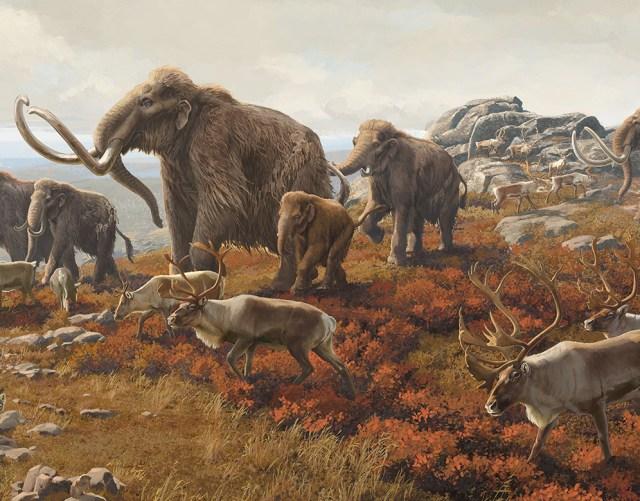 Crop of Beth Zaiken's Pleistocene New York mural featuring mammoth and caribou