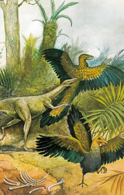 Compsognathus and Archaeopteryx by Tony Morris