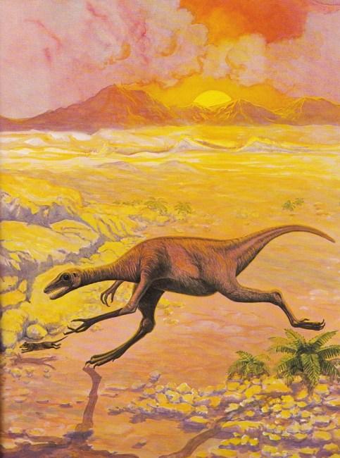 Saurornithoides by Michael Youens