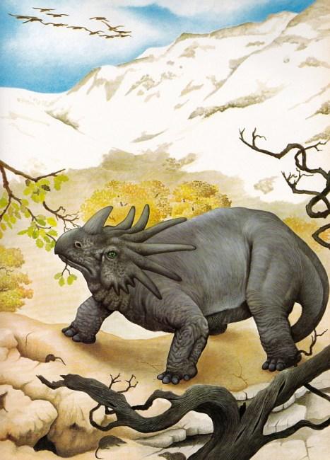Styracosaurus by mystery artist