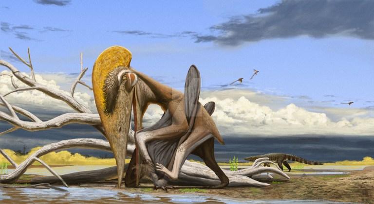 Tupuxuara illustration by Lucas Attwell