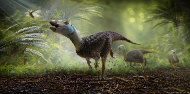 Heterodontosaurus illustration by Dammir G. Martin