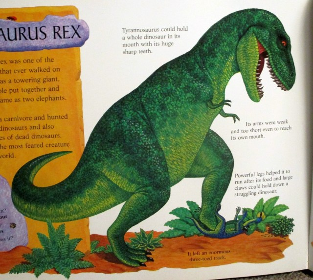 Tyrannosaurus by Anne Sharp