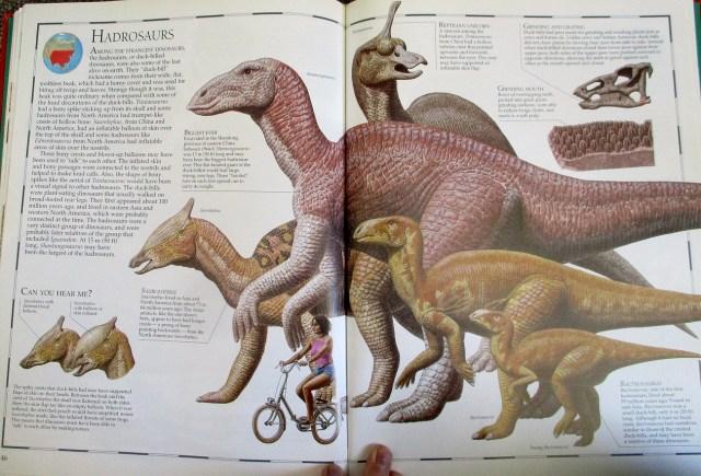 Hadrosaurs - Great Dinosaur Atlas