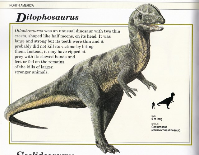 Dilophosaurus by Steve Kirk