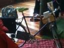 'Dressed' bike