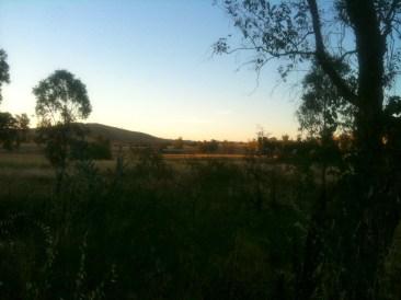 Near Holbrook
