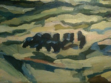 Gisborne view with angus herd