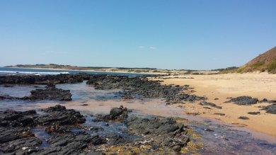 The coastline near Cat Bay