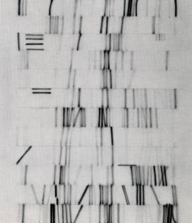 Winter Notations 1975