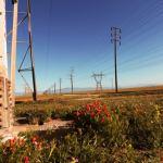 賃貸マンションも対象!2016年4月の電力自由化で何が変わるのか??