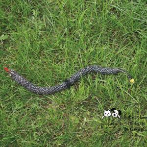 Serpent'in, jouet pour chat et chien créé par Georgia
