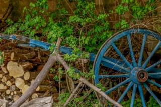 Old ox cart