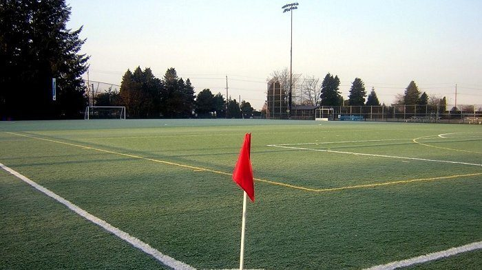 Grass Seed Choices for Athletic Fields