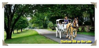horse drawn carriage for a romantic evening