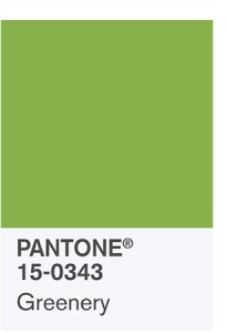 Greenery color of the year by Pantone www.chathamhillonthelake.com
