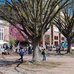 UNC at Chapel Hill quad