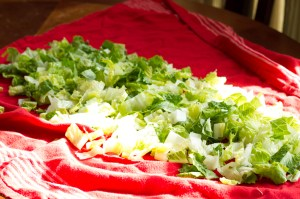 storing salad greens // chattavore