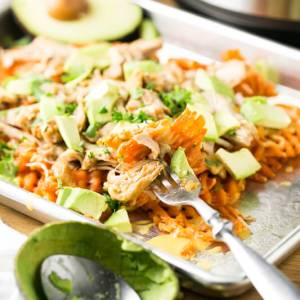 Slow cooker beer chicken is probably the best version of pulled chicken I could think of. It's delicious on its own or piled on a sandwich (or fries)!   Recipe from Chattavore.com