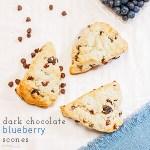 Dark Chocolate Blueberry Scones (Guest Post)