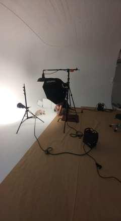 casting shooting photo chaton chat ragdoll chatterie la perle des anges ragdoll normandie caen calvados 12