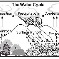 Labelled Diagram Of Water Cycle Loncin 110 Atv Wiring 6th Grade The Ms Sylvester S Science Page Picture