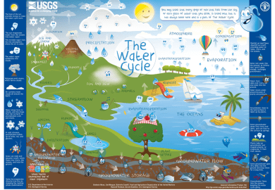 Water Cycle Facts For 7th Grade