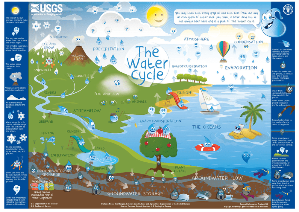 medium resolution of 6th Grade The Water Cycle! - Ms. Sylvester's Science Page