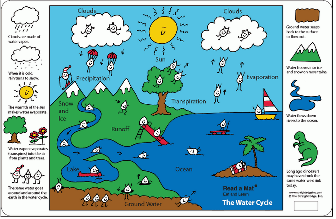 hight resolution of 6th Grade The Water Cycle! - Ms. Sylvester's Science Page