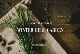 winterherbgarden5