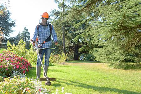 entretien des jardins à Rennes