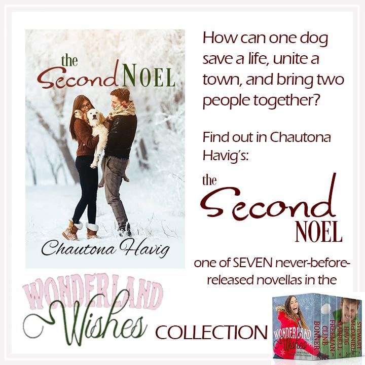 The Second Noel- Wonderland Wishes