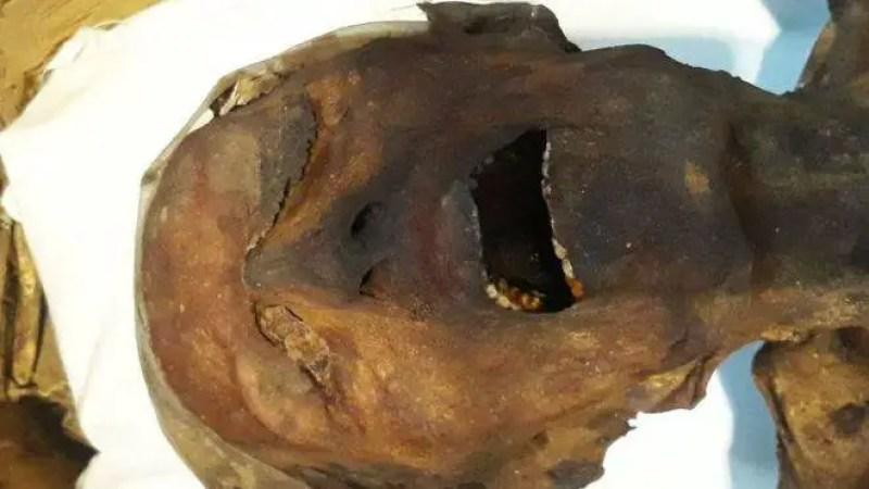 A múmia que grita!