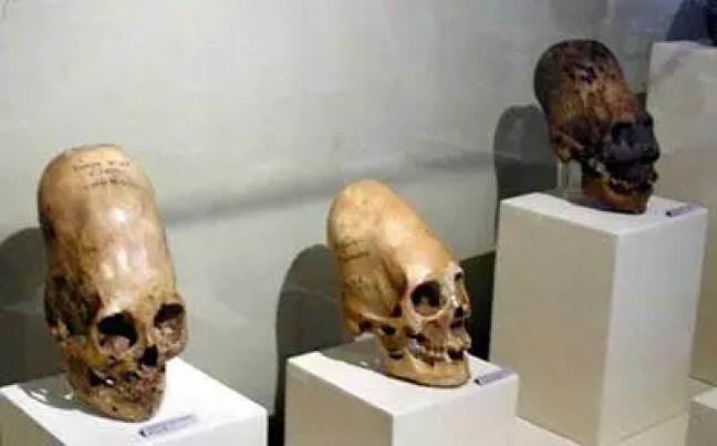 Crânios alongados encontrados em Nazca, Peru